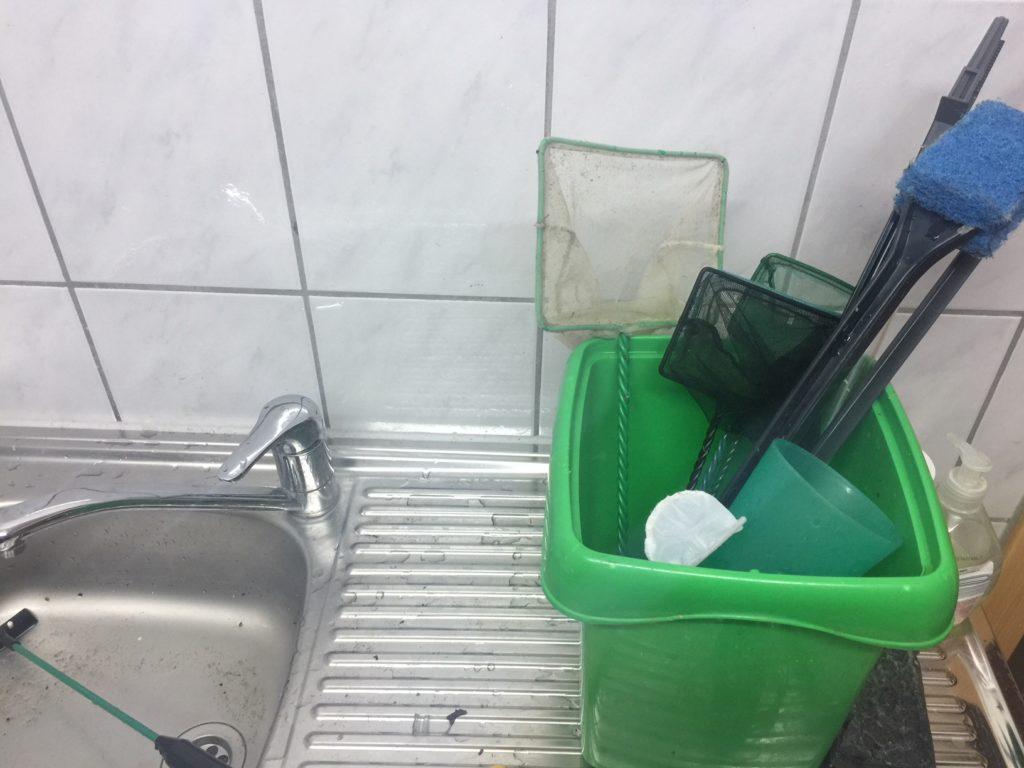 Aquarium Reinigung putzen