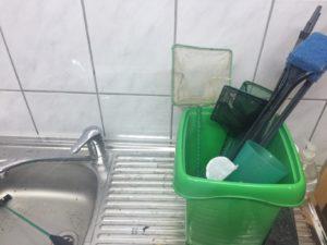 Aquarium Reinigung und Pflege – Tipps rund ums Putzen