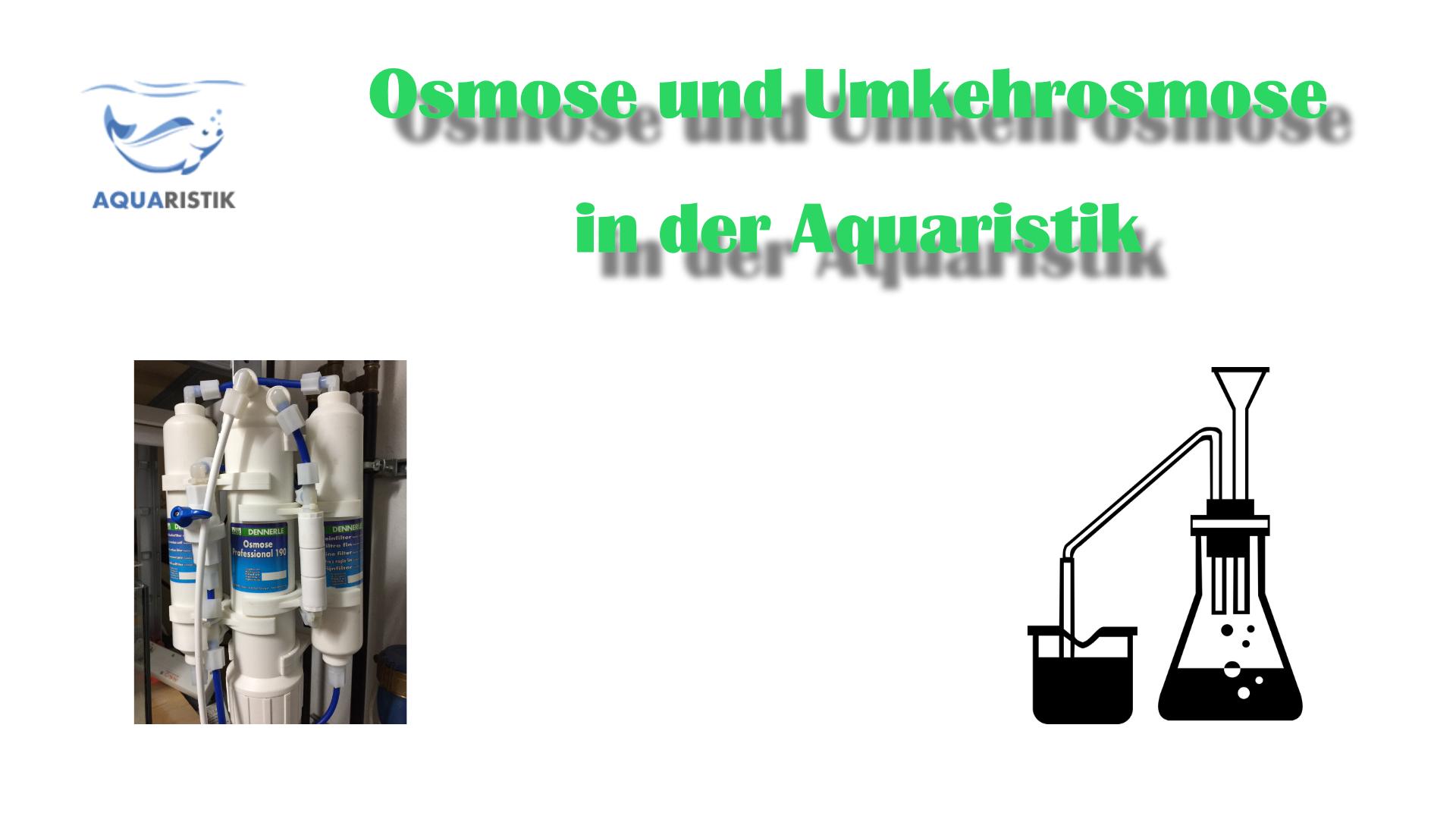 Osmose Umkehrosmose