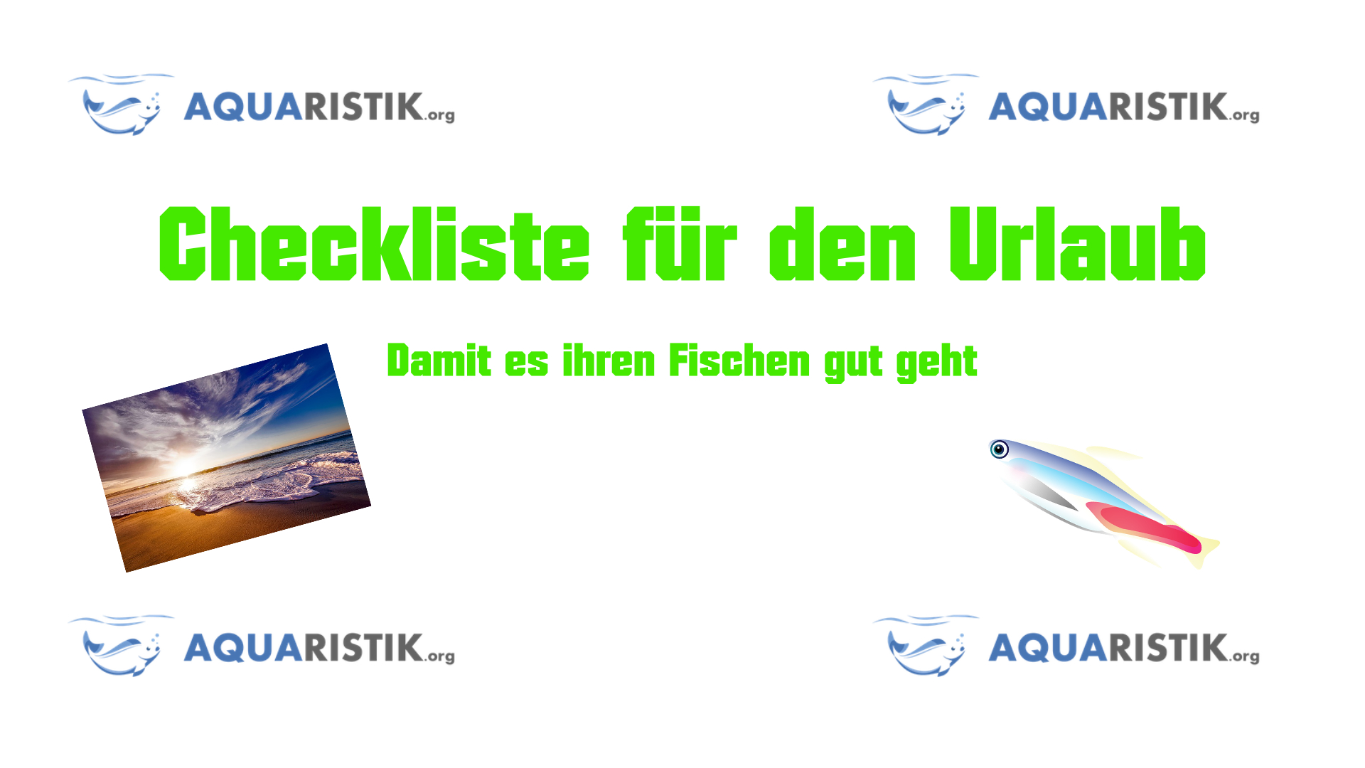 aquarium im urlaub checkliste zur bergabe und pflege aquaristik. Black Bedroom Furniture Sets. Home Design Ideas