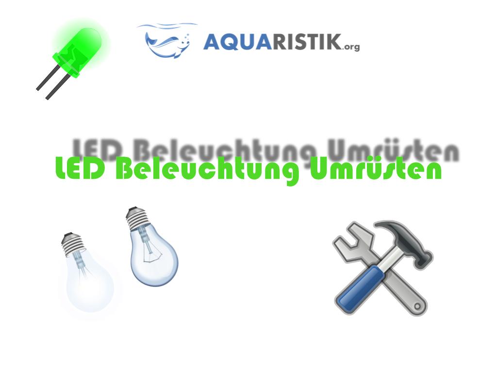 Aquarium beleuchtung auf led umbauen aquaristik for Putzerfische teich