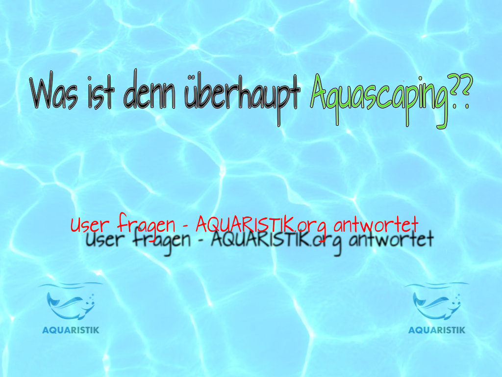 Was ist Aquascaping?