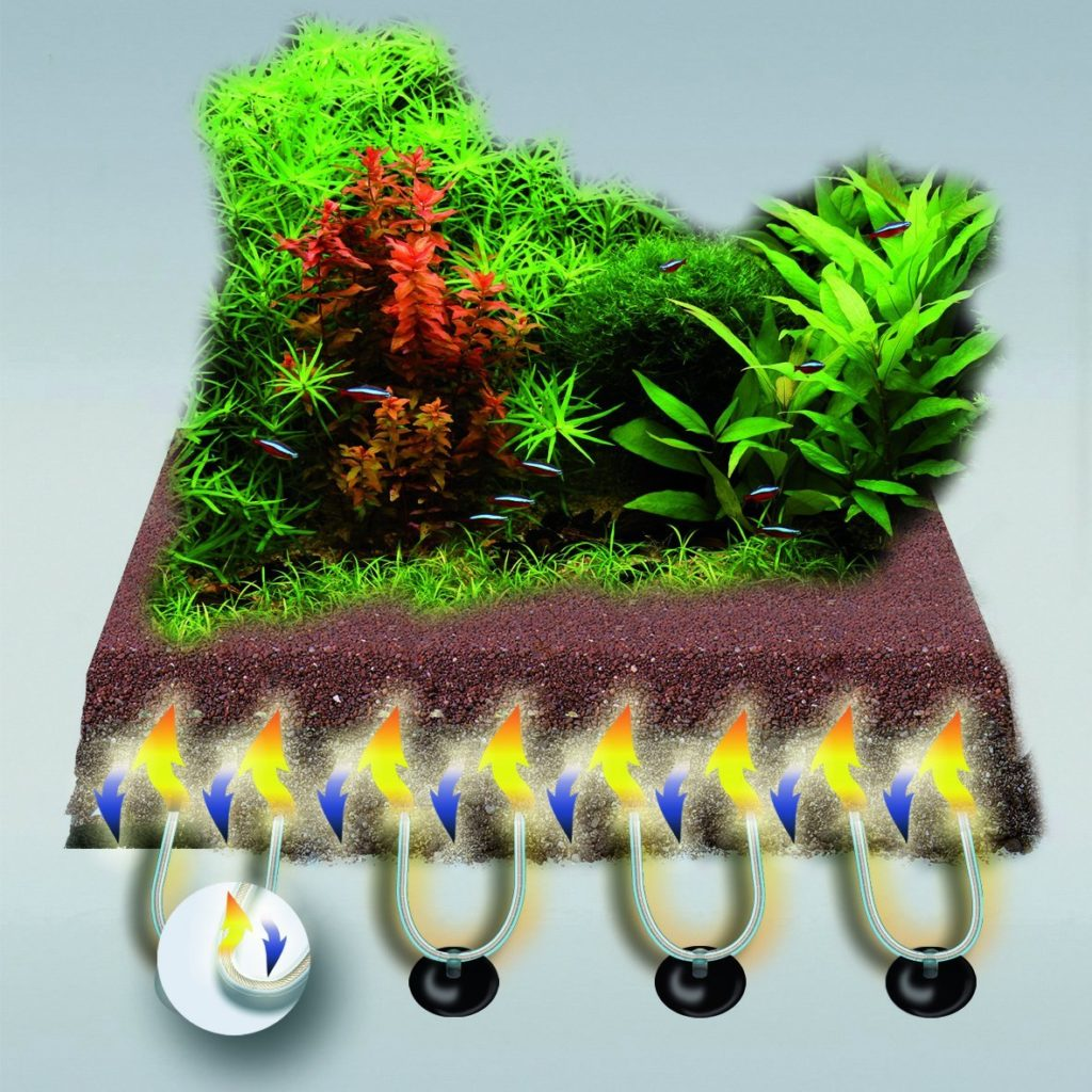 aquarium bodenheizung der bodenfluter aquaristik. Black Bedroom Furniture Sets. Home Design Ideas