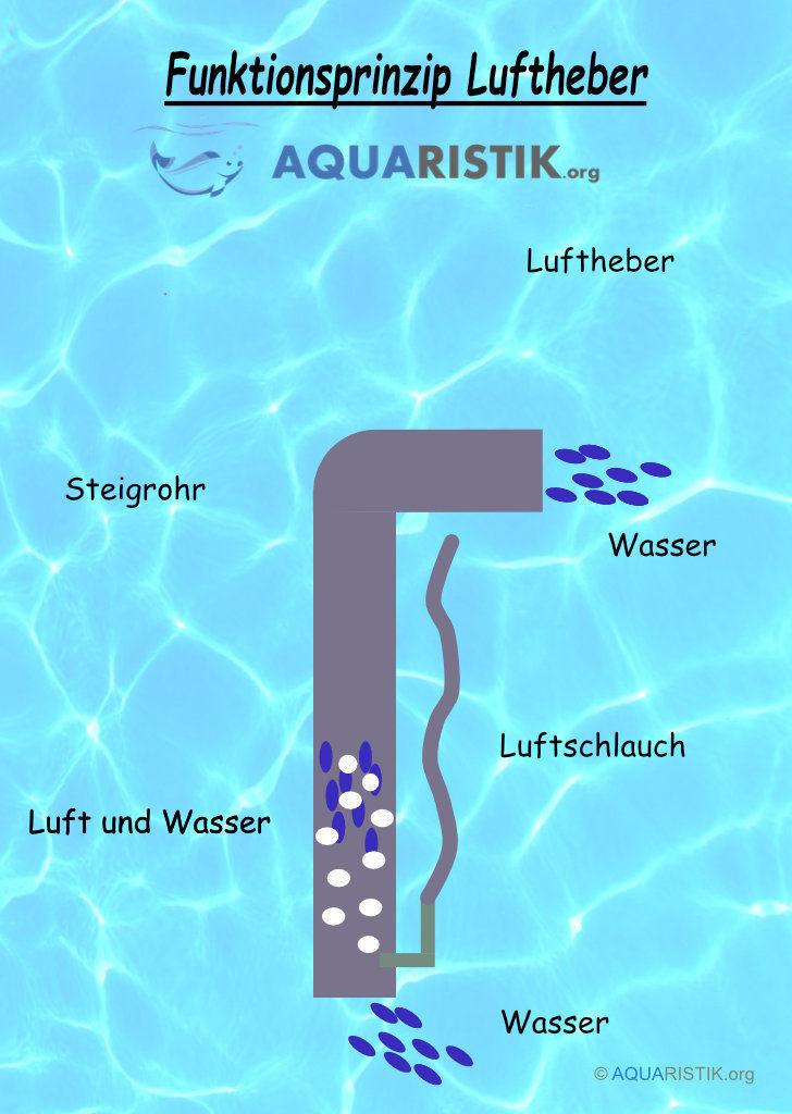 Normaler Luftheber Aquarium