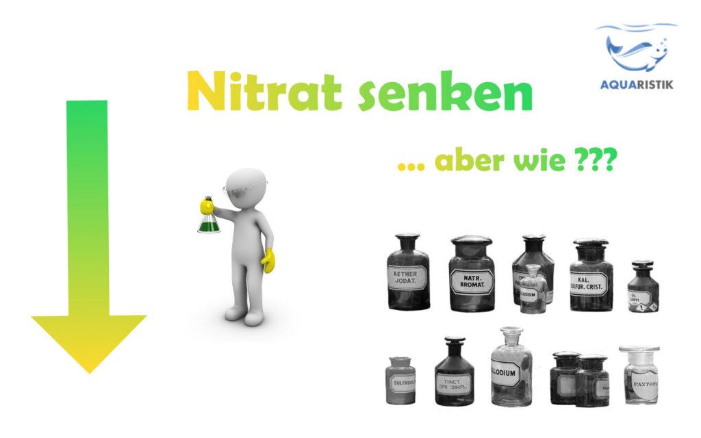 Nitrat senken im Aquarium