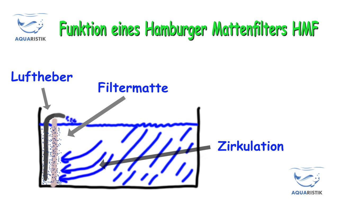 Hamburger Mattenfilter Hmf Ratgeber Aquaristik